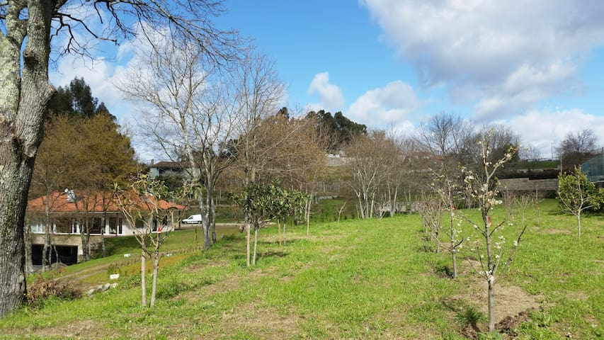 Bright Country House Penafiel - Penafiel - Casa