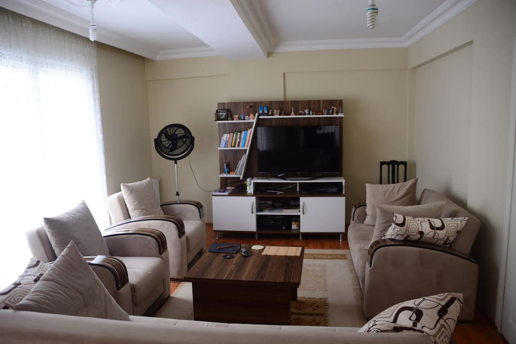 living room with sun light