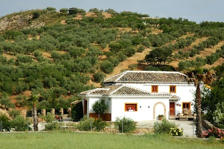 Spacious Cottage in Andalusia with Swimming Pool