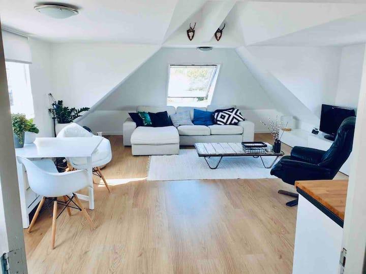 Licht appartement in centrum Alphen aan den Rijn