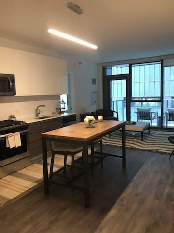 Work Ready 1 BR Apt steps from Loop by Domio