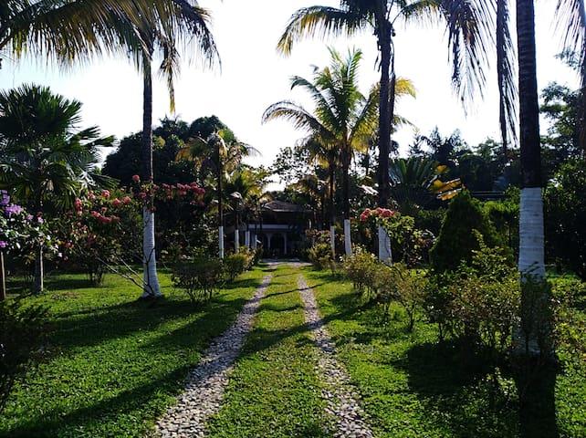 Tierralinda, Room CCII