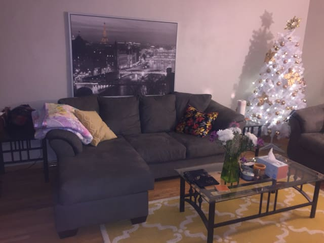 Beautiful Apartment in Saint Paul/Minneapolis - Saint Paul - Byt