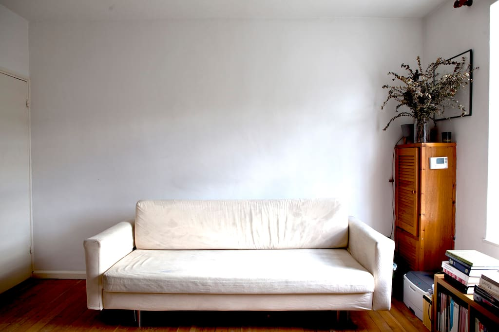Living room with two person sofa bed