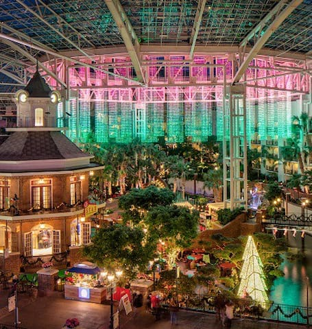 Book Now! Near Opryland Christmas Lights & Shows