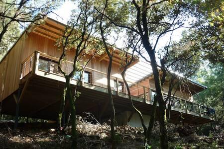 Maison en bois dans la forêt à 5mn d'Alès