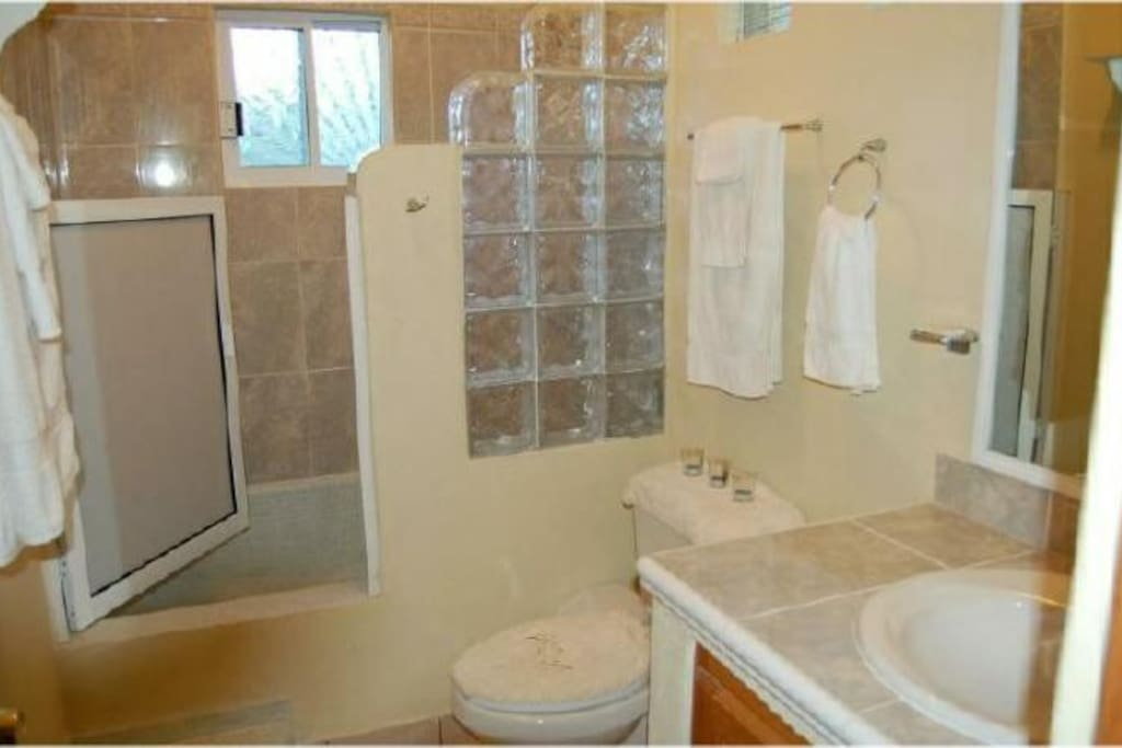 The bathroom is clean and beautifully tiled!