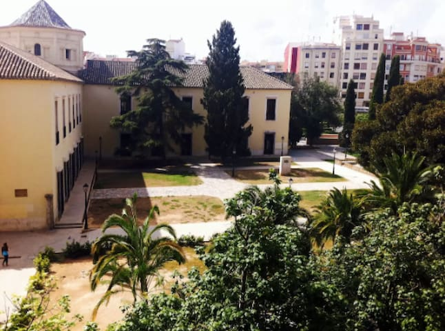 Beautiful single room in the city centre - València - Apartment