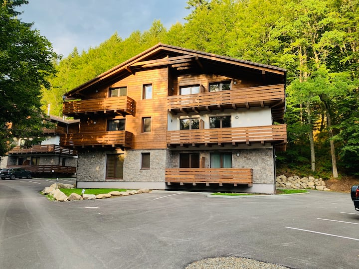 Lucnica apartments - mountain style ski&golf apts.