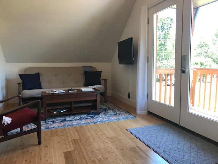 Modern 1 Bedroom Apartment near UO