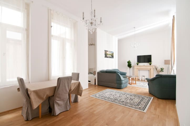 Luxury Apartment in the city centre of Vienna