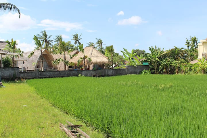 Thatched Rice Paddy Huts overlooking the Sea #3 - Mengwi - Bungalo