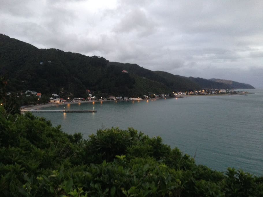 Days Bay and Eastbourne from deck