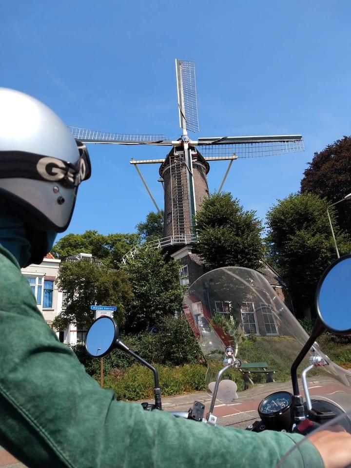 Dutch views