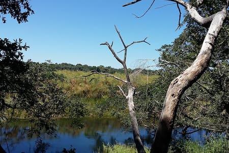 Askiesbos Camp Okavango Delta & XanikweActivities