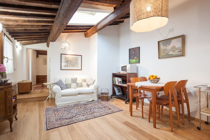 Cosy apartment in historical centre