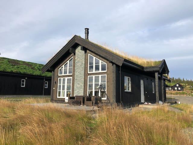 Lisetra/Hafjell, ny fin familiehytte, godt utstyrt