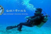 海猴子潛水旅宿-四人房(可入住2-4位)