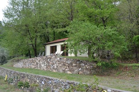 Atelier, det lilla huset i skogen