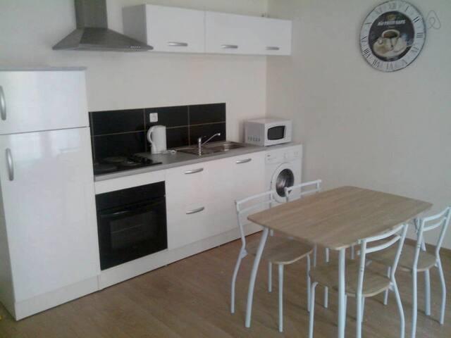 Grand appartement, une chambre double, un séjour avec cuisine équipée. Salle de Bain. Canapé. Table et chaises. Wi-Fi et Clim !