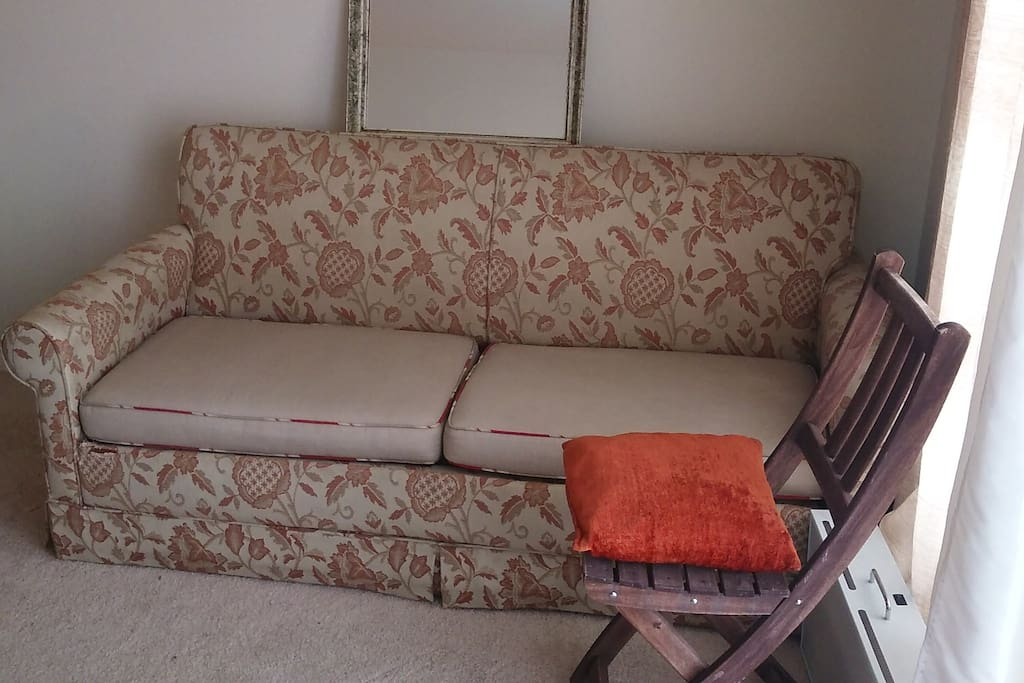sofa bed for guest