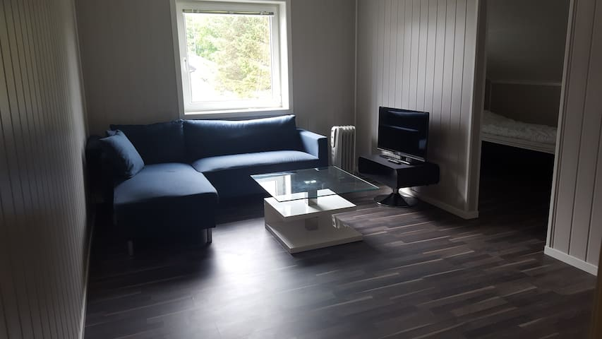 High standard  Close to Ålesund and Ulstein - Hareid - Apartamento