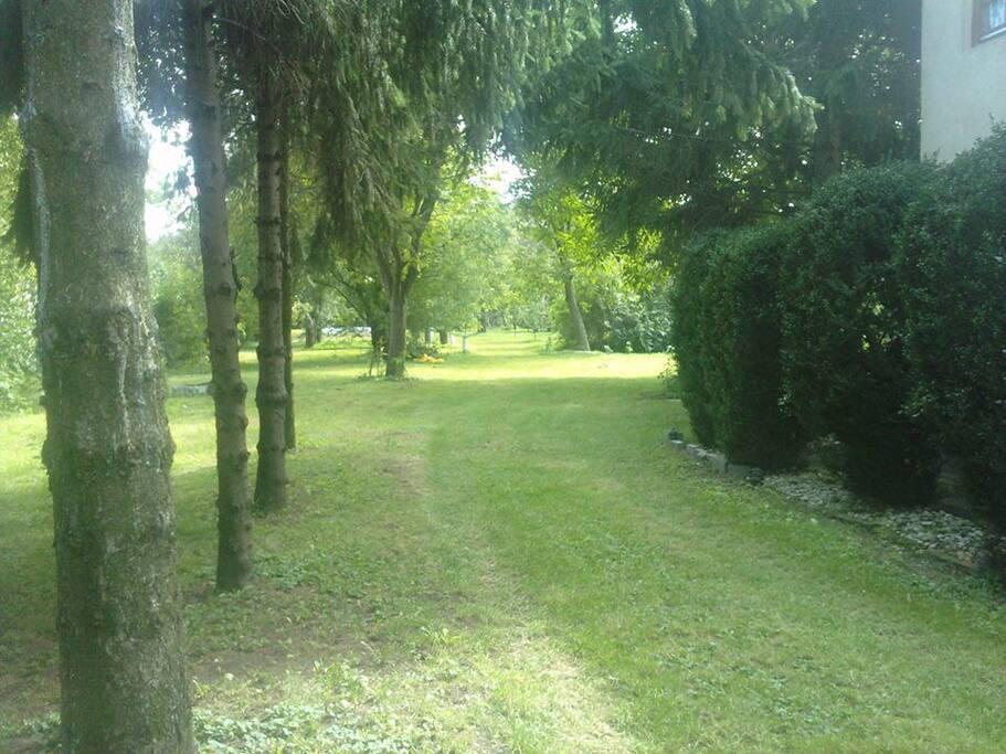 Einfahrt und Sicht auf den großen Garten