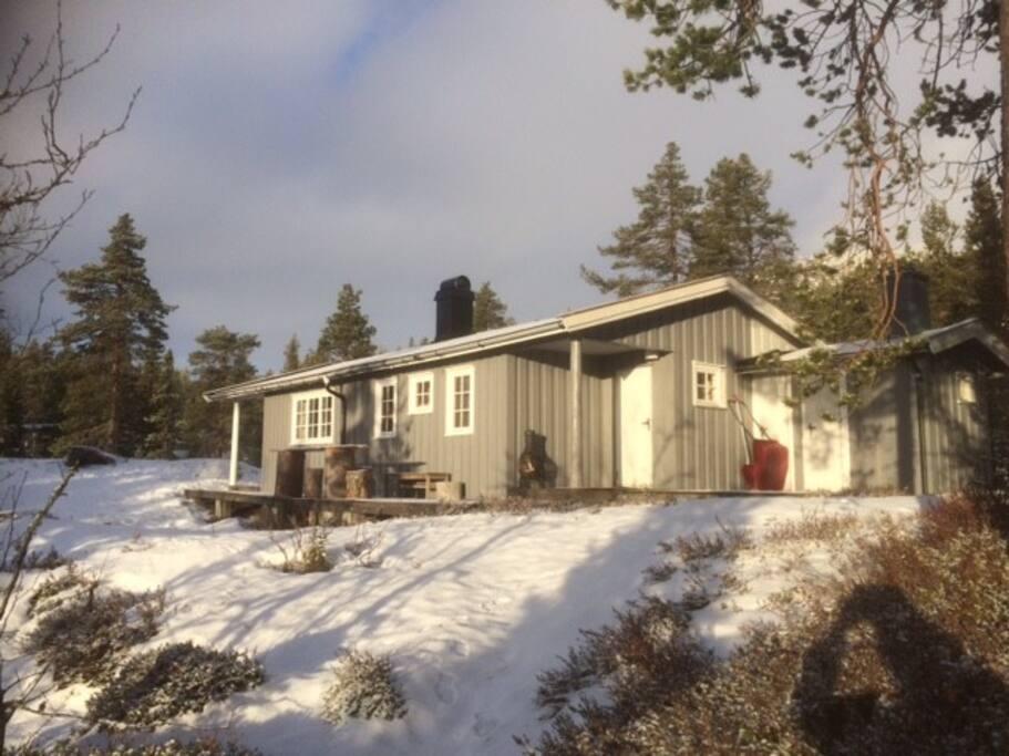 COSY CABIN, Norefjell, book now,avail:24-26 MARS! - Blockhütten zur Miete in Norefjell, Buskerud ...