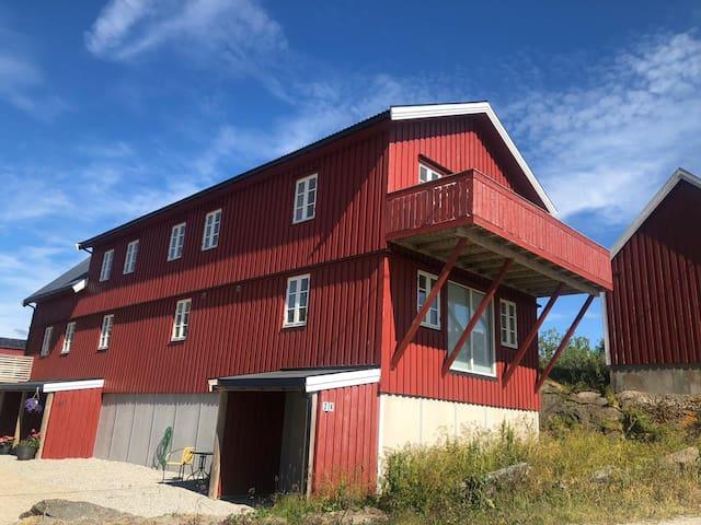 Lofoten, modern cabin with seaview