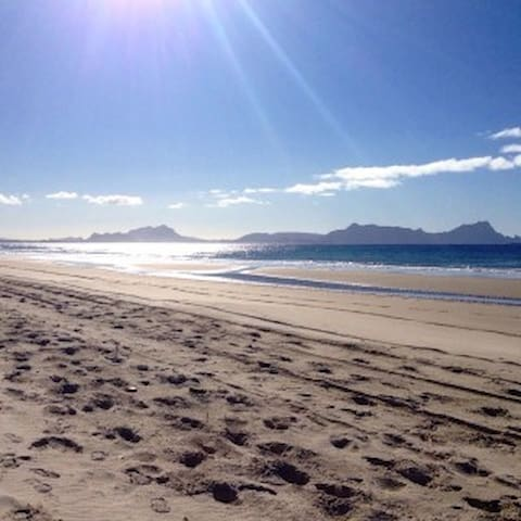 White sands of beautiful Uretiti within walking distance.
