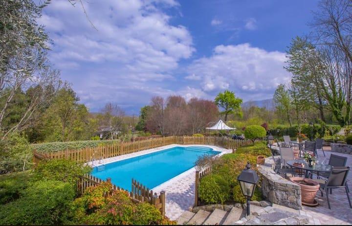 Splendida Villa In Collina Verde Sul Lago Maggiore