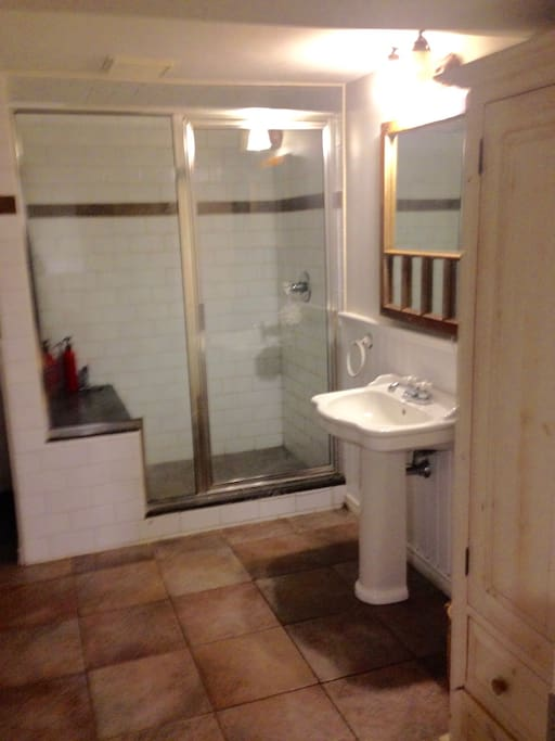 Private bathroom with large shower, plus washer dryer.