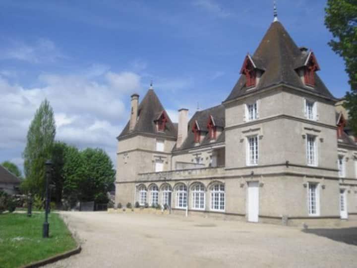 Château de Mariol/Vichy+ piscine  superbe 240M2-4*