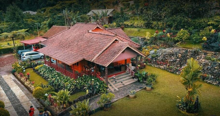 Nice Villa Family Suite at Villa Honey Robert