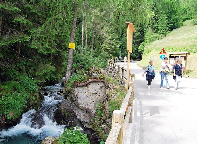 Dolomite Tabià Palue - Sottoguda-palue - Daire