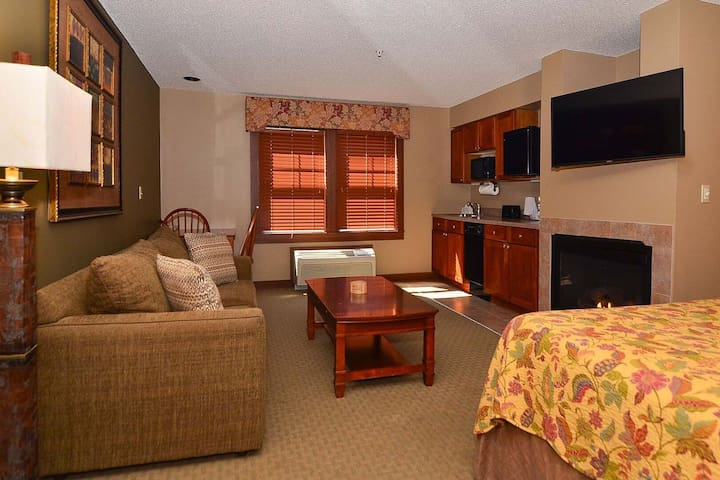 A118- Studio suite w/ standard view sleeps four, has a fireplace!