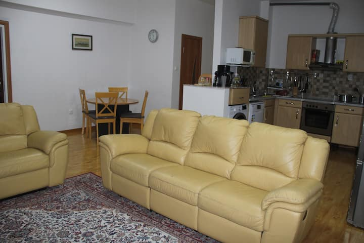 Beautiful Two room apt in City Ctr.