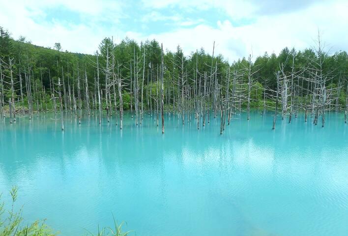 Blue lake in Biei