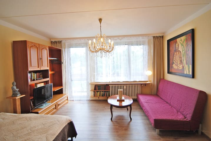 Cozy Spacious Room with Balcony, Great Location -L
