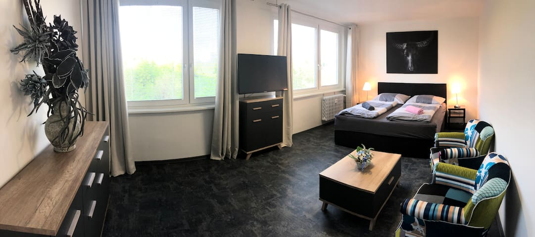 Luxury new apartment only 30 min. to old Town