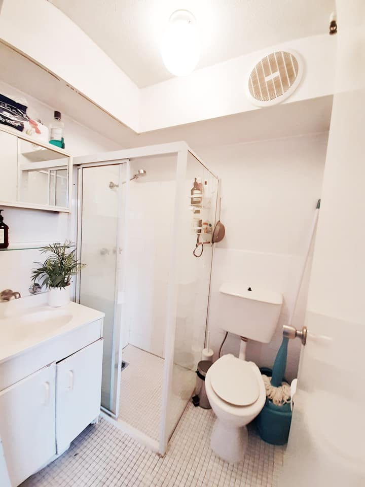 Cosy and bright Studio apartment