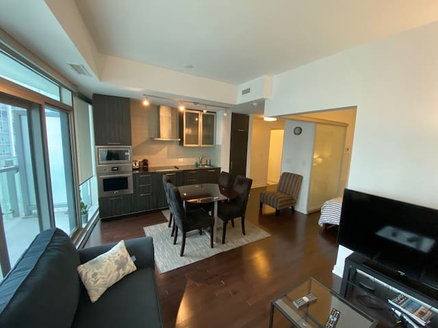 1 Bedroom condo walking distance to Union Station