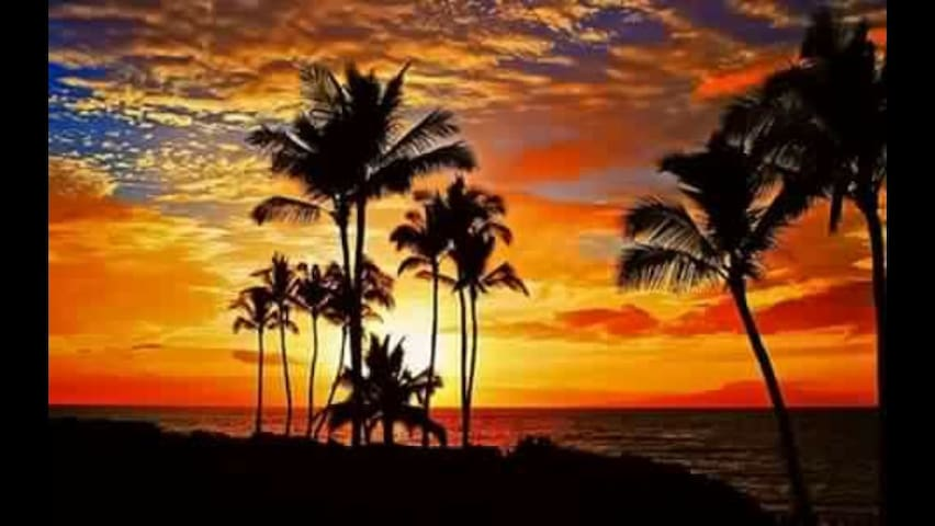 Breathtaking Ocean Beach Condo Kaanapali , Maui!