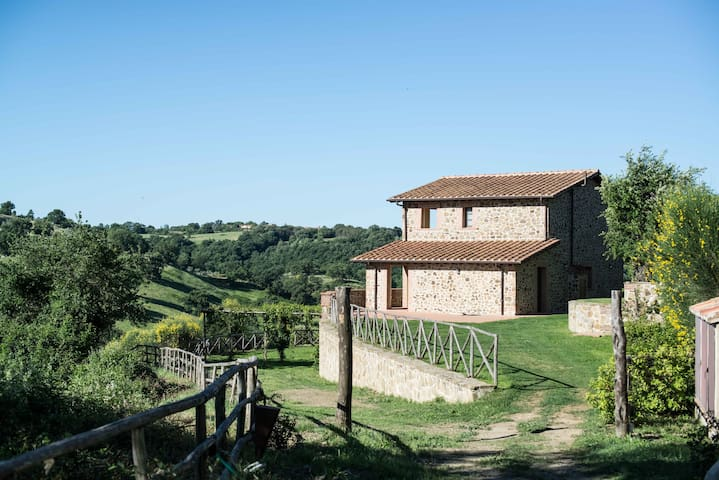 Your home with a view in Scansano, Tuscany