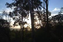 Sunrise across the clarence river from veranda