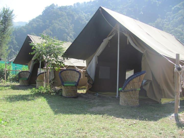 Jungle Camp in Rishikesh