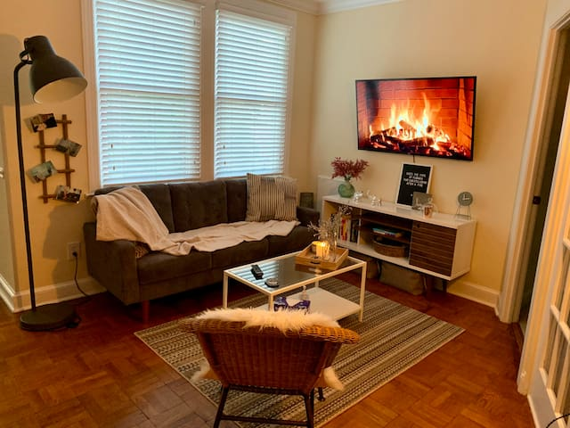 Relaxed, Bright 1 BR in Old Town, Alexandria