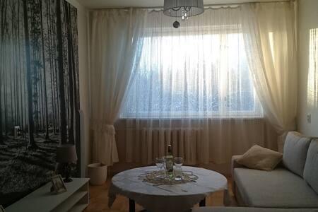 Turba Treier Apartment - 25 minutes from Tallinn - Turba