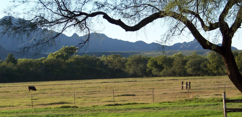 Hidden Ranch House at Santa Gertrudis Lane