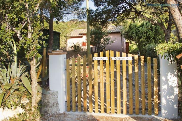 Cottage Vittoria - ibookingelba